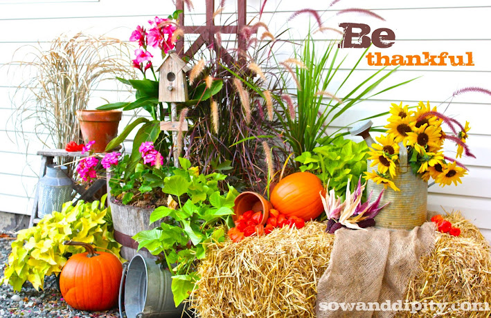 my fall display happy thanksgiving, curb appeal, seasonal holiday decor, thanksgiving decorations