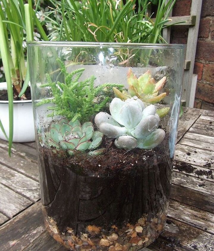 """simply layer 2"""" gravel, then compost,,then arrange your succulents how you want them"""