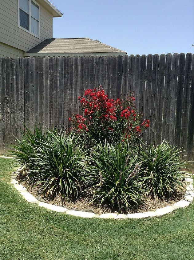 """Backyard - one of four """"half moon"""" beds in back yard"""