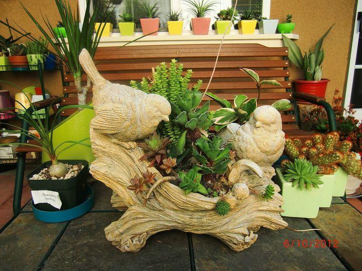 my patio table center piece, gardening, outdoor living, patio, succulents