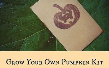 Grow a Pumpkin Trick Or Treat Kit