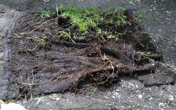 What the Weed Control Fabric Looks Like After Years in the Garden