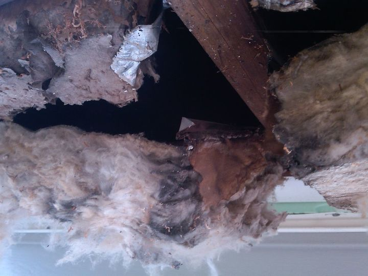 """3"""" of Insulation that was found above the 10"""" floor joists on the overhang"""