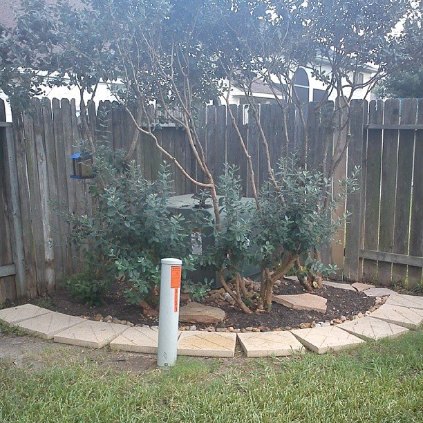 q how to hide a residential transformer and telephone cable tower, gardening, landscape