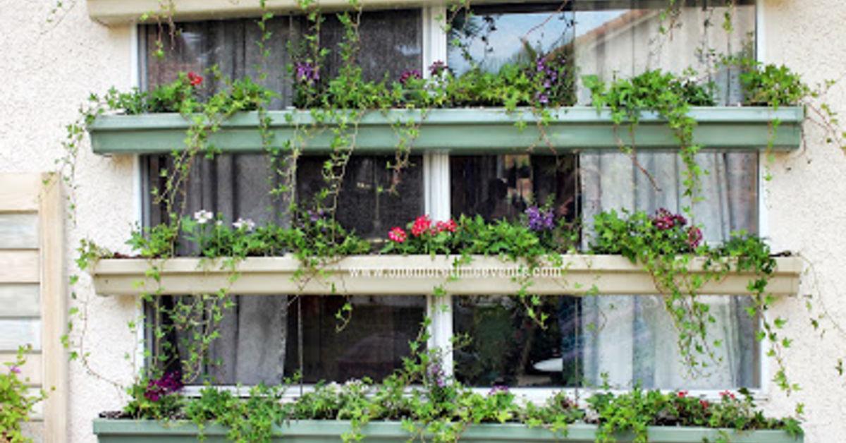 Living Window Shade Hometalk