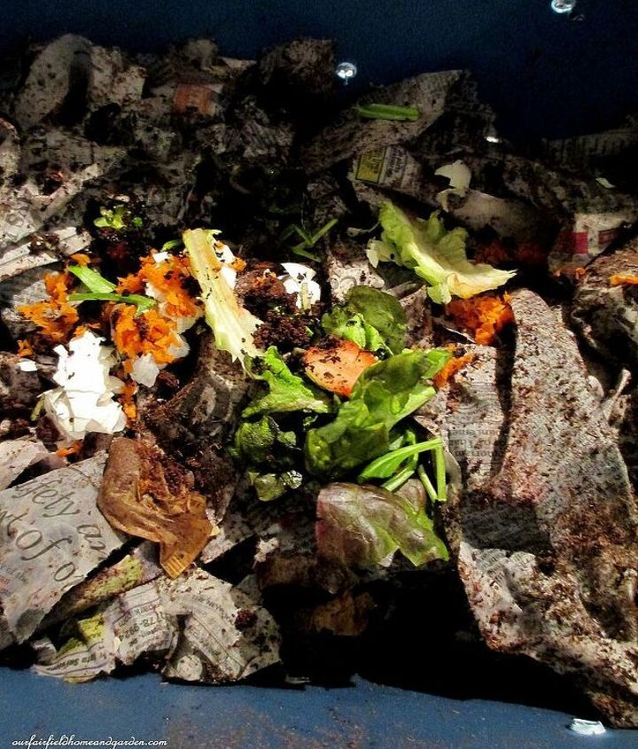 Step # 4 ~ now add a few kitchen scraps. Keep the moisture at this level by adding a little water or wet plant matter if dry, shredded paper if too wet