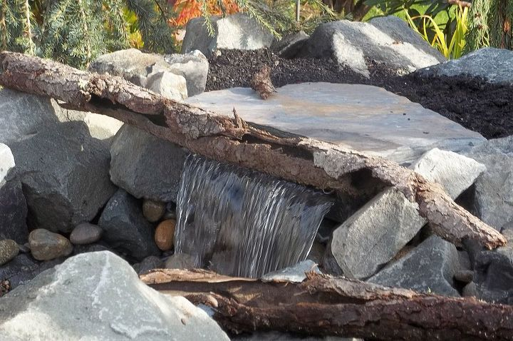 using logs to make your water feature pop, outdoor living, ponds water features