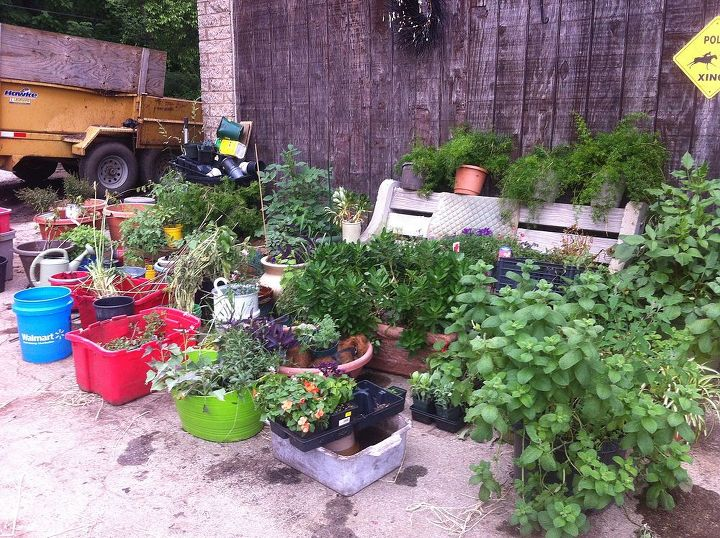 Donated plants from all over used planted every single item. Planted them all ...all over.