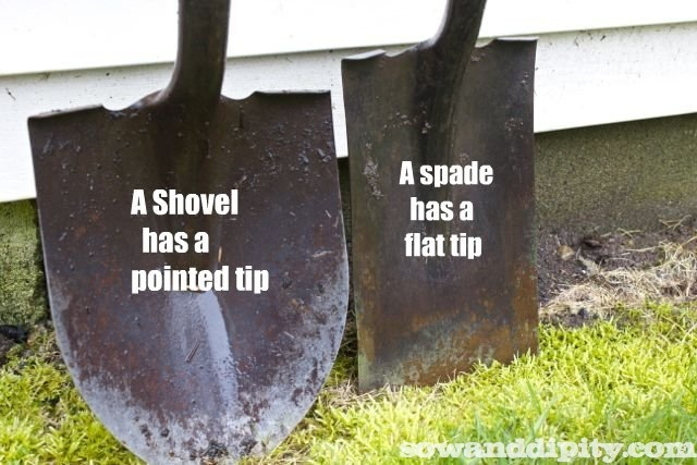 Shovels= scooping and lifting   Spades=cutting and scraping.