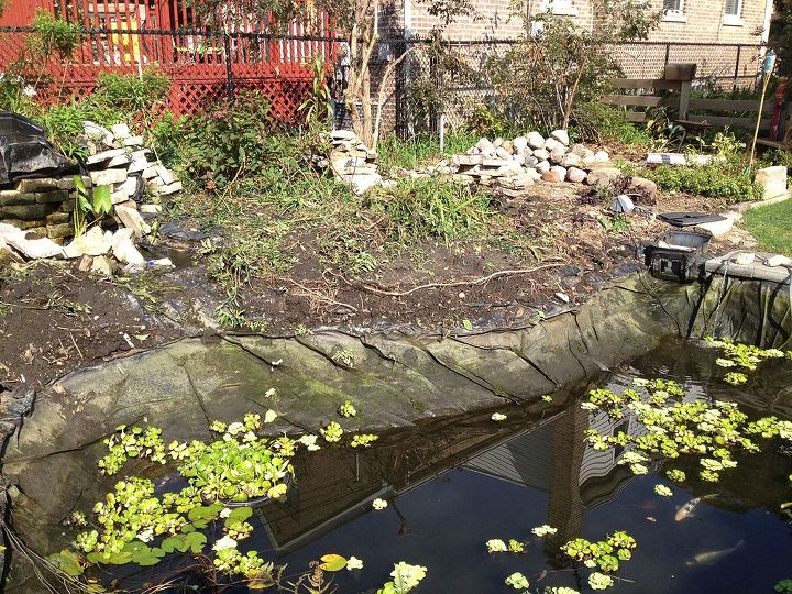 pond rehab in chicago a tree fell in and did a lot of damage, home maintenance repairs, outdoor living, ponds water features, Pond prior to rehab
