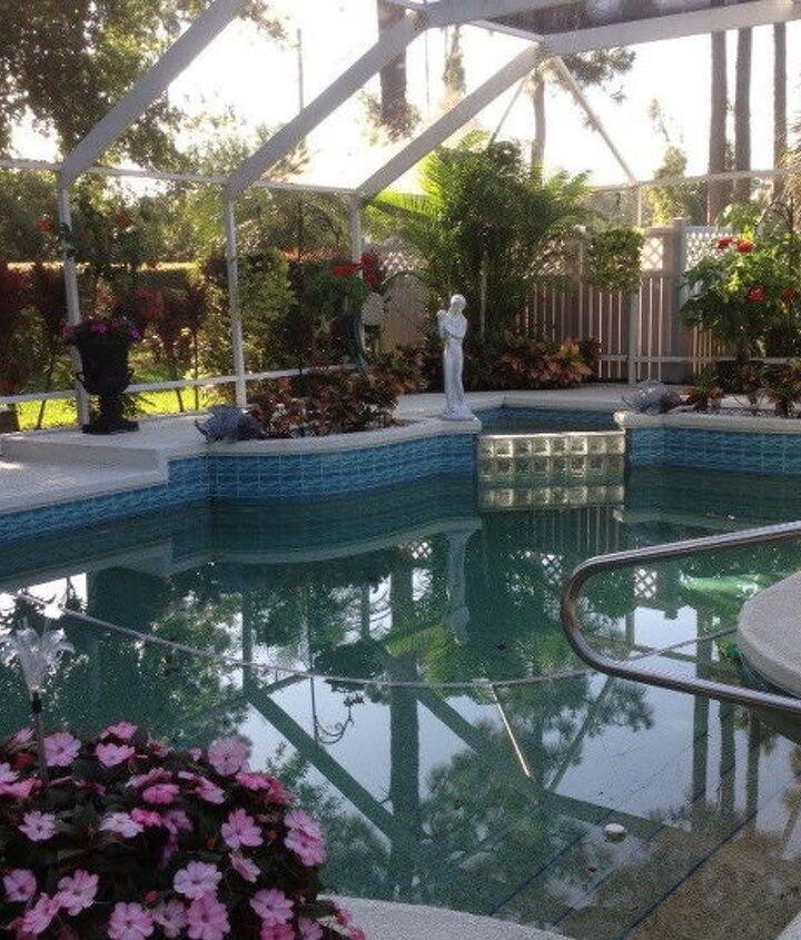 love gardening in florida, flowers, gardening, hibiscus