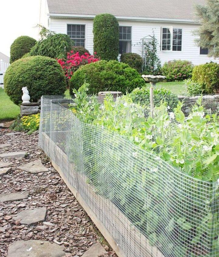 q hoe does your vegetable garden grow, gardening, outdoor living