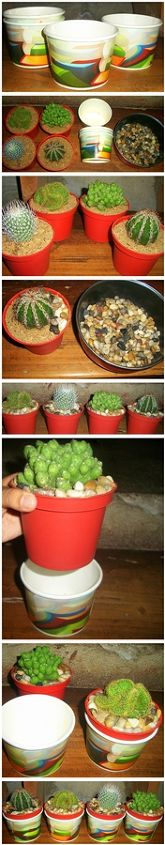 recycle used food cups and add river stones to make your cacti planters daintier, gardening