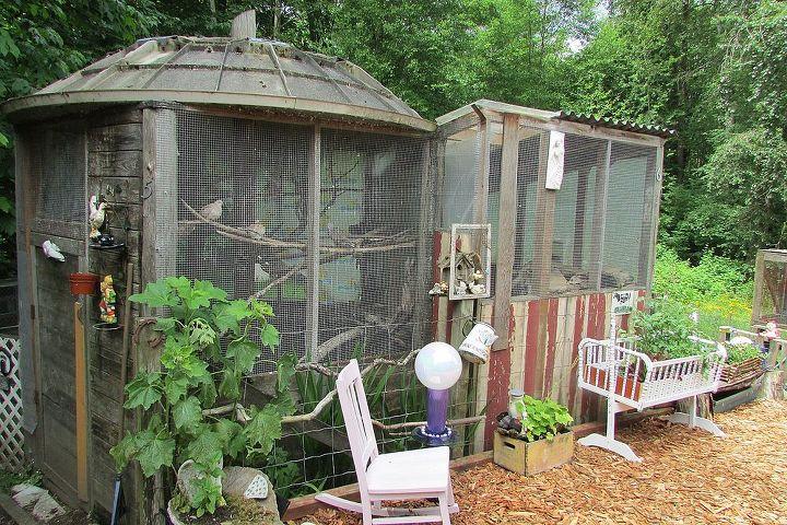 satellite dish bird cage, diy, pets animals, repurposing upcycling, Satellite dish bird cage roof
