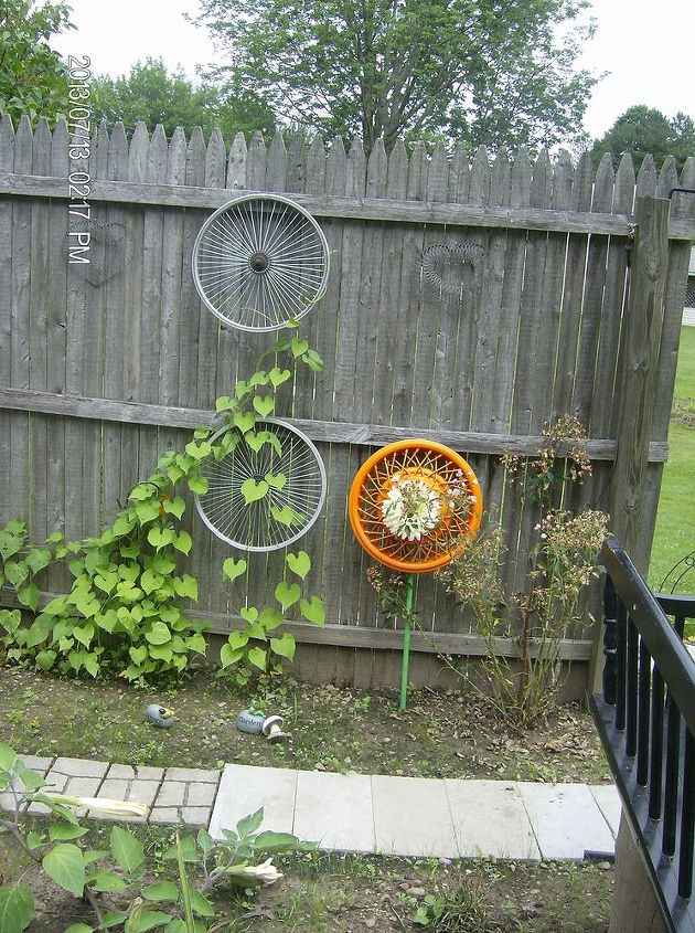 Hung up a couple bicycle tire rims for my morning glories to climb. Hub cap flower in there also