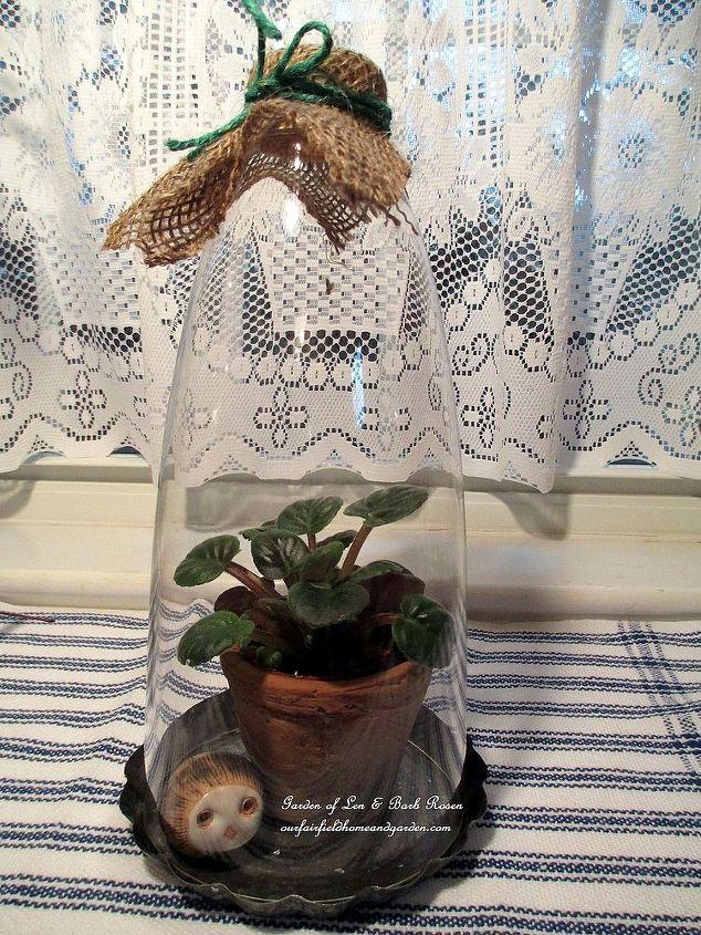 miniature violet & stone owl under a lamp glass cloche http://pinterest.com/barbrosen/