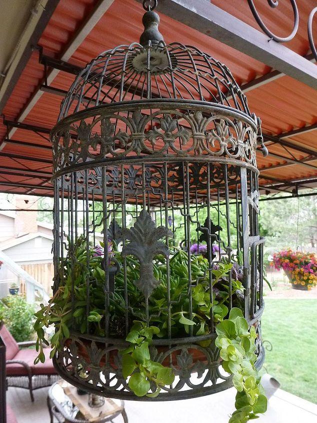 Birdcage filled :)