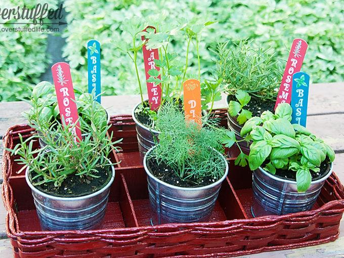 easy patio herb garden, container gardening, gardening
