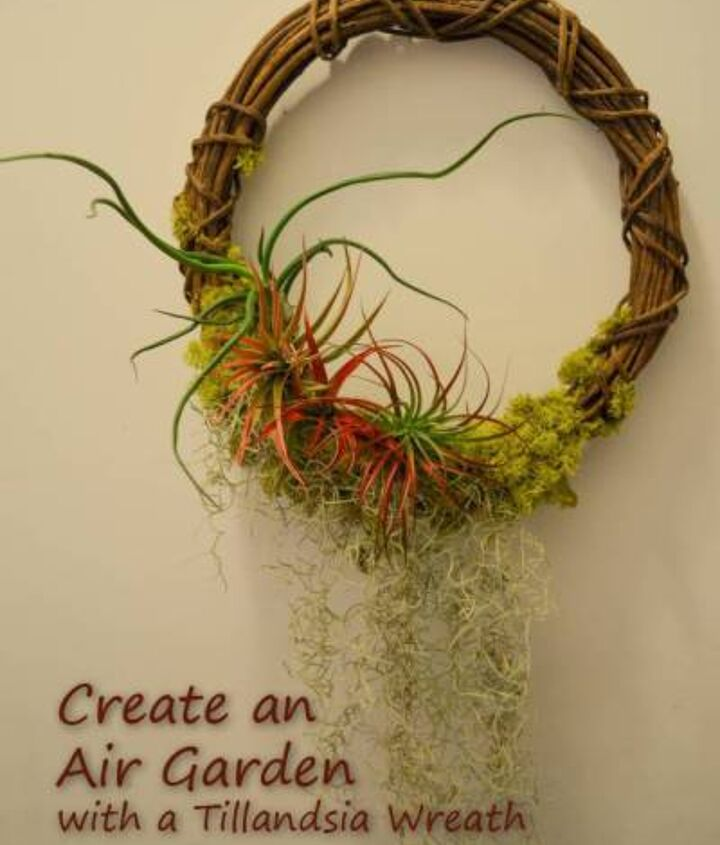 Create your own Air Garden!  With minimal upkeep these gardens can stay up year round. Offering 365 days of beauty.