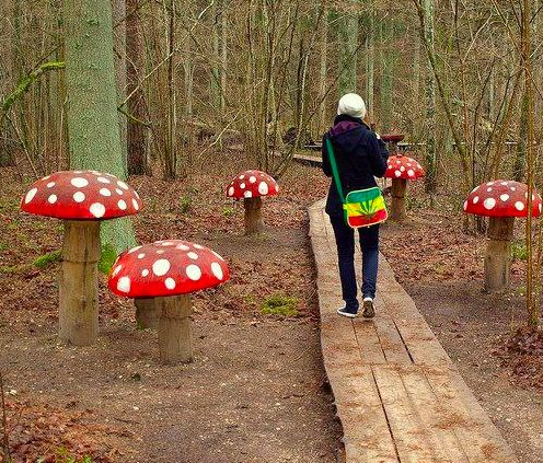 11 creative mushroom projects for your garden, gardening, Made from logs