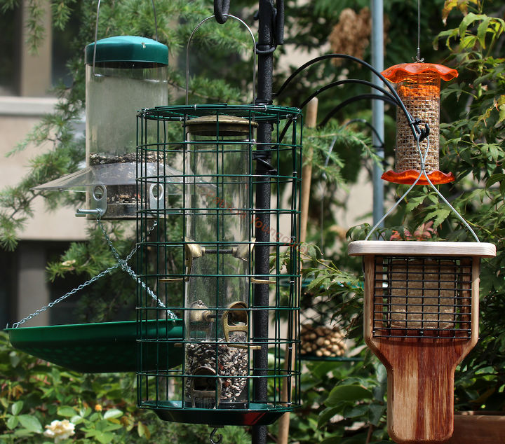 "This image of a ""food court' (array of bird feeders) in my garden was featured in my 9-20-13 post on HT @ http://www.hometalk.com/2243447/catching-crumbs-that-fall-to-the-floor-followup-3-to-8-22-s-post"