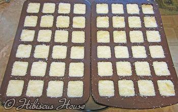 Homemade Dishwasher Powder Tabs