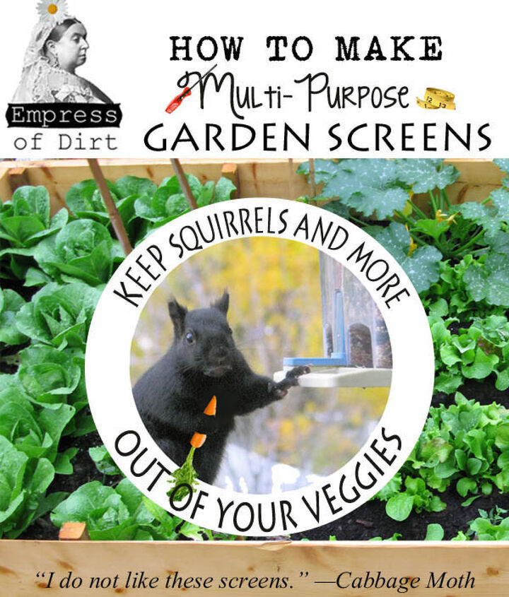 Full instructions and materials are listed on my blog: http://www.empressofdirt.net/most-useful-garden-accessory-this-year-squirrel-screens/