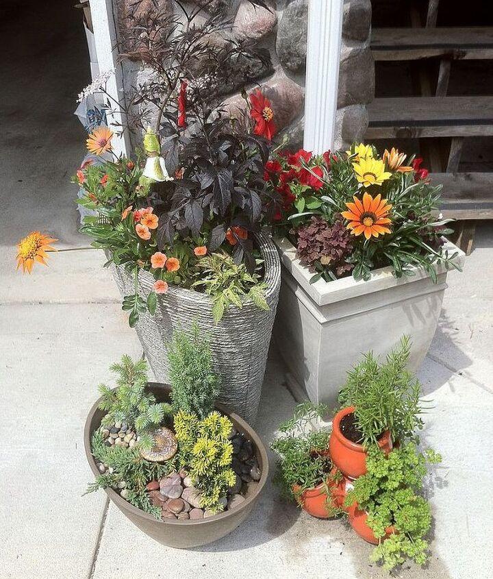 container gardening, container gardening, gardening