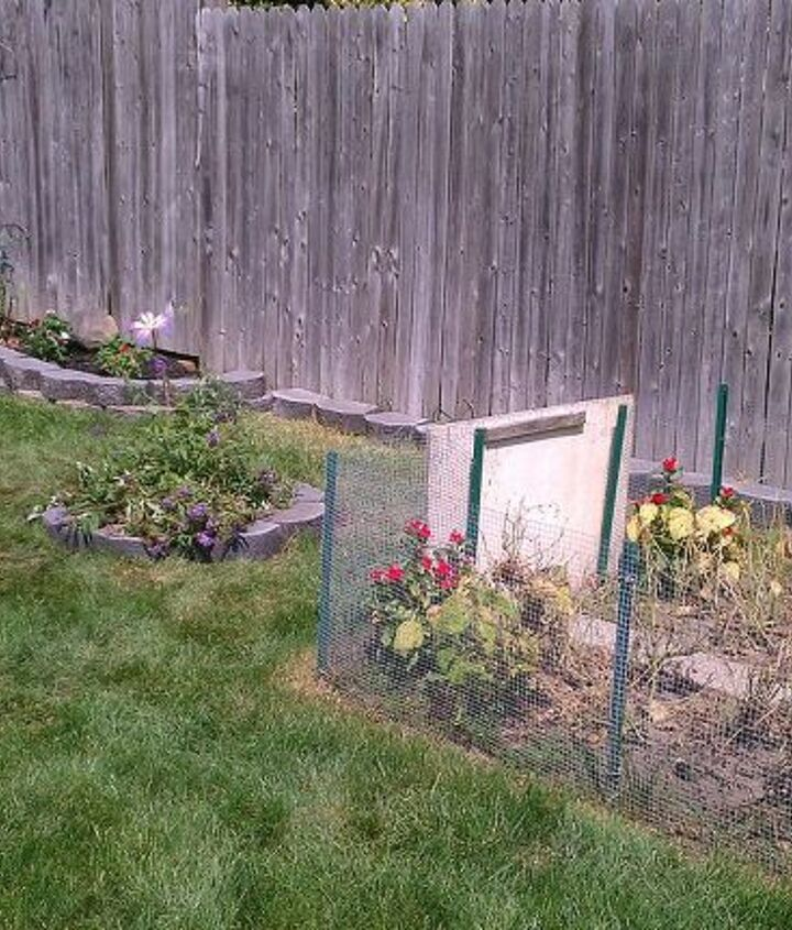Oh and I know the veggie garden looks bad. Green beans, corn done need to pull out yet. Cucumbers are still growing