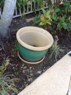 huge, heavy plant pot