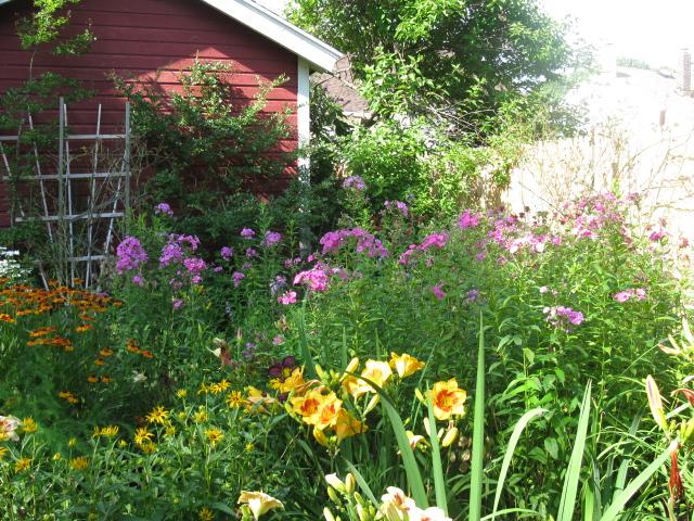 le jardin de luis luis garden, flowers, gardening