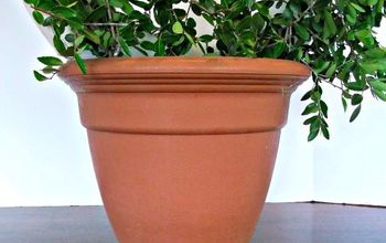 diy boxwood topiary, crafts, gardening, wreaths, A boxwood wreath topiary is easy and inexpensive to make You can leave it natural or preserve it
