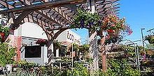 landscaper know how classic cedar pergola notching the post, outdoor living, woodworking projects, Pergolas and Arbors can add so much beauty as well as adding function to a space Hanging baskets grace this clean and simple Classic Cedar Pergola