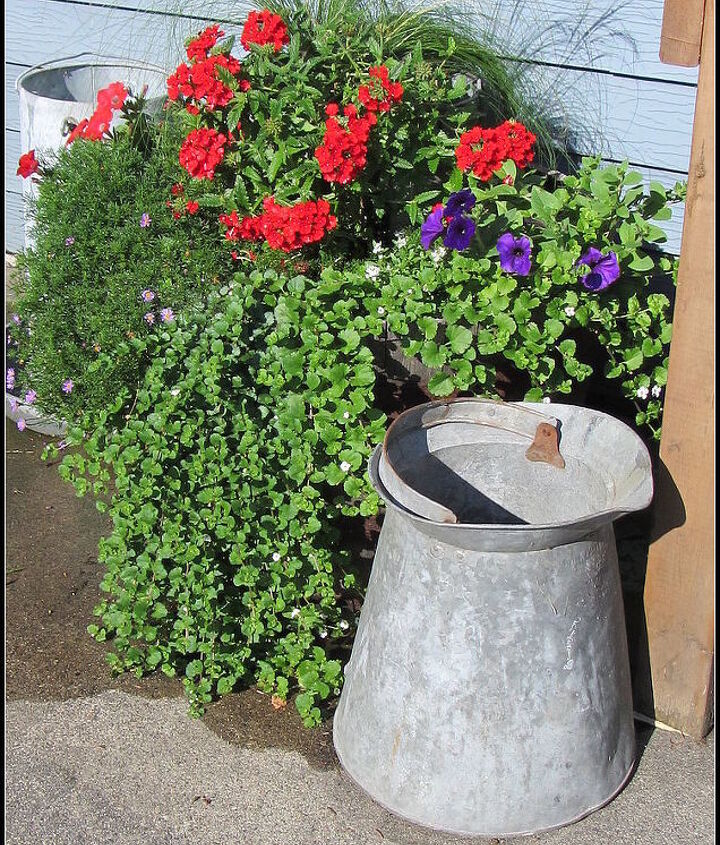 Left side of the potting bench has another barrel with mop bucket, watering can, and chicken feeder.