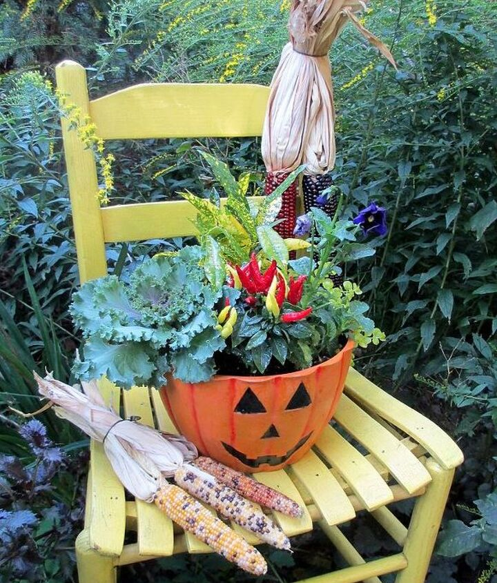 Autumn harvest chair in the garden (made with Indian corn, a $5 garage sale chair and a jack o' lantern planter with solidago growing in the background) http://pinterest.com/barbrosen/our-fairfield-garden/