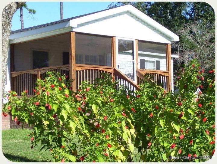 lake home sw ga, outdoor living