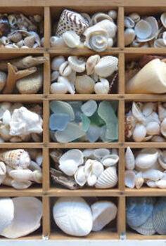vintage printers tray shells, repurposing upcycling, storage ideas, vintage printers tray with shells