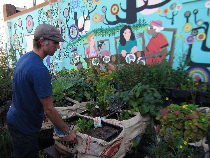 is there a community garden i can join, gardening, homesteading, urban living, A rooftop Community Garden in San Francisco