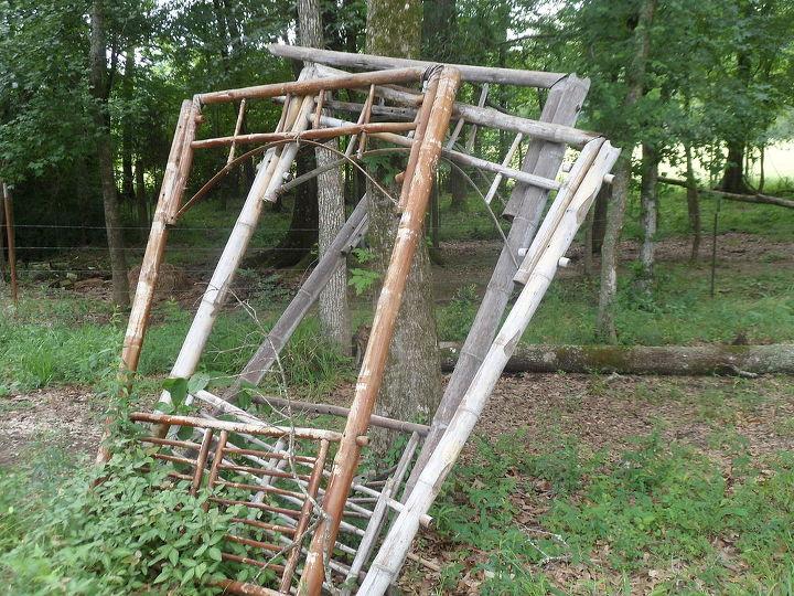 Repurposed  trellis frames