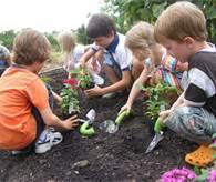 Children learning to work a garden.