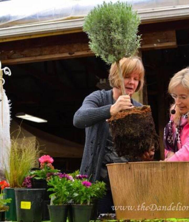 Planting demo with @Darvonda at Milner Gardens Garden Party.
