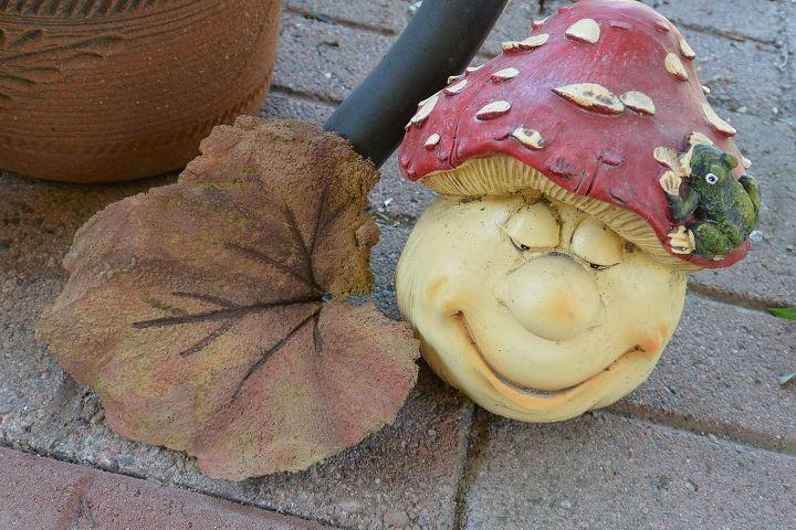 The squash leaf.