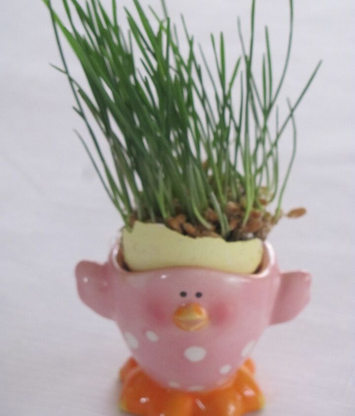 I painted some egg shells, willed them with potting soil, and planted the wheat grass in them.