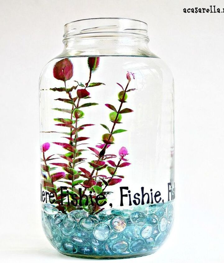 This cute fish bowl...