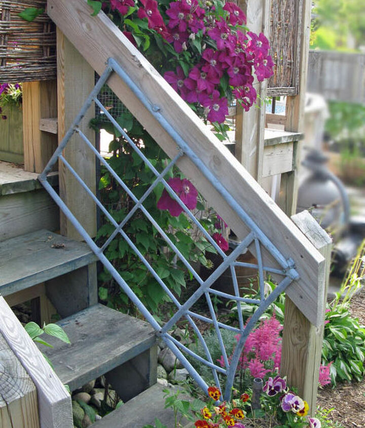 grow clematis for a gorgeous burst of colour, flowers, gardening, Clematis likes to keep its feet cool and moist this spot beside the deck was ideal