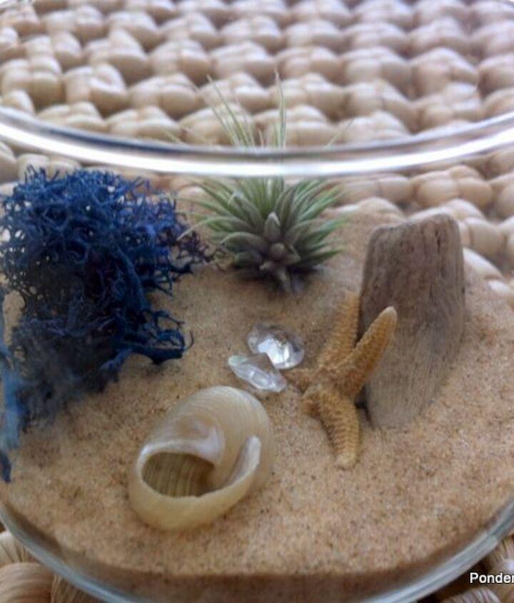 mini beach terrarium in stemless wine glass, gardening, repurposing upcycling, seasonal holiday d cor, terrarium