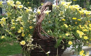 basket found in someone s trash, flowers, gardening, repurposing upcycling, My husband found this basket on someone curb side trash I had to dress it up with some flowers What do you think