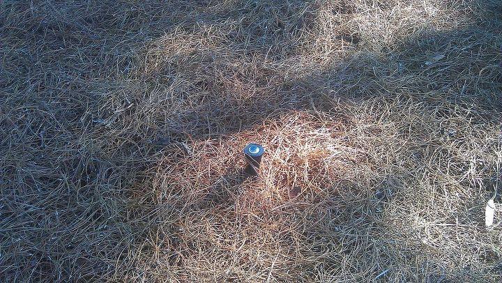 Sprinkler heads above ground?? Is this ok? | Hometalk