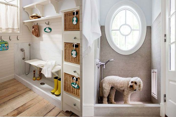 10 awesome and adorable pet friendly home inventions, home decor, pets animals