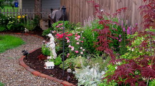 start all over again or plant around, flowers, gardening, landscape